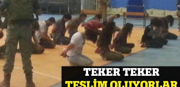Mardin'de 25 PKK'lı teslim oldu
