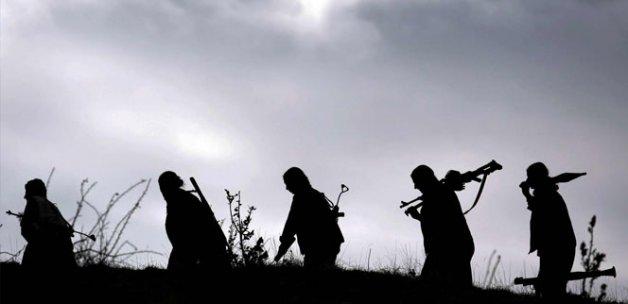 Nusaybin ve Şırnak'ta 11 terörist etkisiz hale getirildi