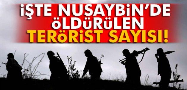 Nusaybin'de 403 terörist etkisiz hale getirildi