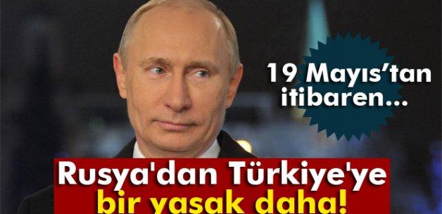 Rusya, Türkiye'den kabak ve balkabağı alımını yasaklıyor