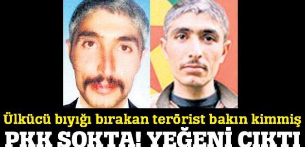 Şanlıurfa'da öldürülen O PKK'lı Zübeyir Aydar'ın yeğeni çıktı