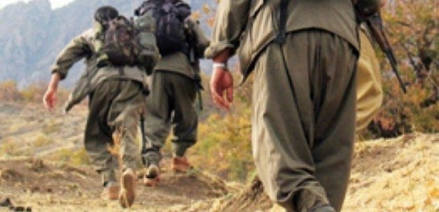 ABD dergisinden PKK'ya talimat gibi makale!
