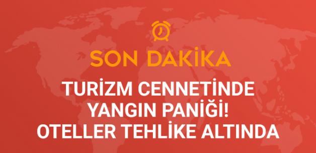 Antalya'da Oteller Bölgesinde Orman Yangını