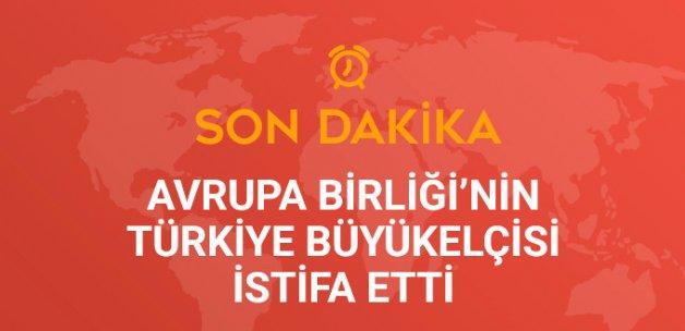 Avrupa Birliği'nin Türkiye Büyükelçisi, İstifa Etti