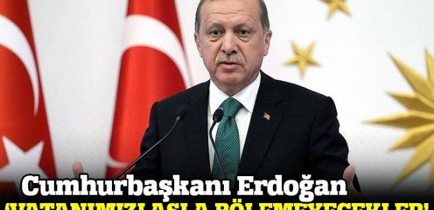 Cumhurbaşkanı Erdoğan: Vatanımızı asla bölemeyecekler