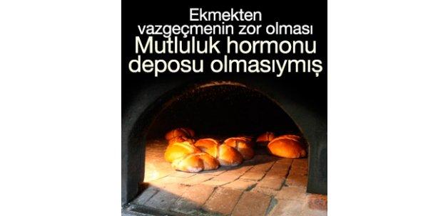 Ekmekte mutluluk hormonu bulundu