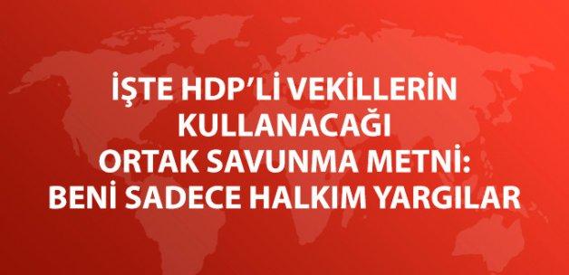 HDP'nin Ortak Savunma Metni: Beni Sadece Halkım Yargılar