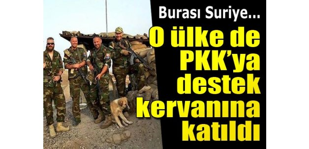 İsveçliler de YPG'ye katıldı