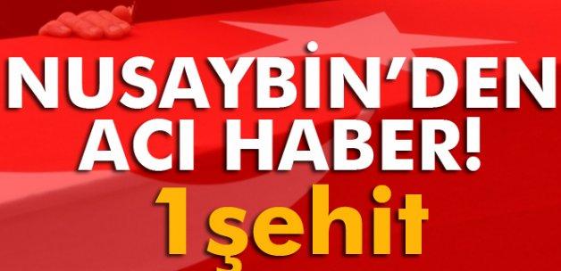 Nusaybin'den acı haber: 1 şehit