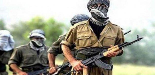 Ağrı'da 2 PKK'lı terörist öldürüldü