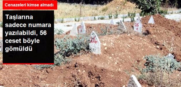 Cenazeler   Kimsesizler Mezarlığına Gömüldü