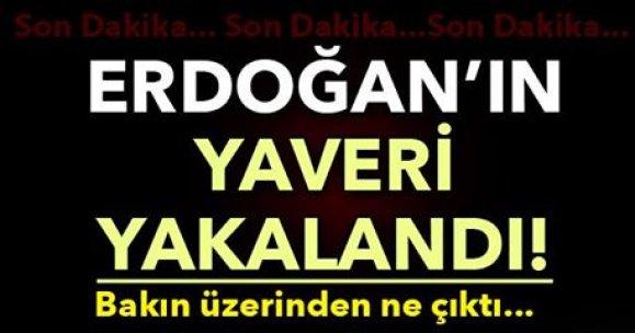 Erdoğan'ın yaveri yakalandı