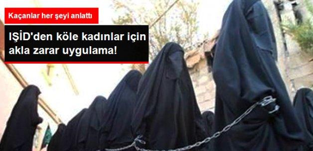 IŞİD, Köle Olarak Tuttuğu Kadınların Veri Tabanını Oluşturmuş