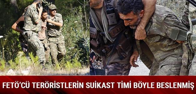 Kaçan FETÖ'cü teröristlerin asma yaprağı ve sapıyla beslendikleri öğrenildi