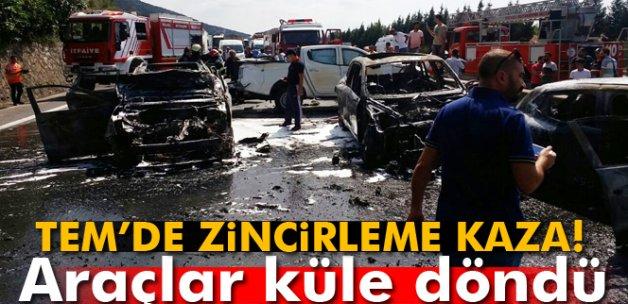Kocaeli TEM'de zincirleme kazada araçlar küle döndü: 7 yaralı