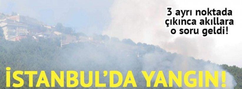 Maltepe'de ormanlık alanda 3 ayrı noktada yangın