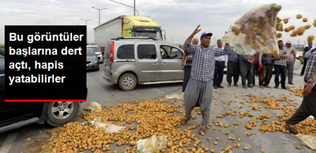 Patates Eylemi Yapan Çiftçilere