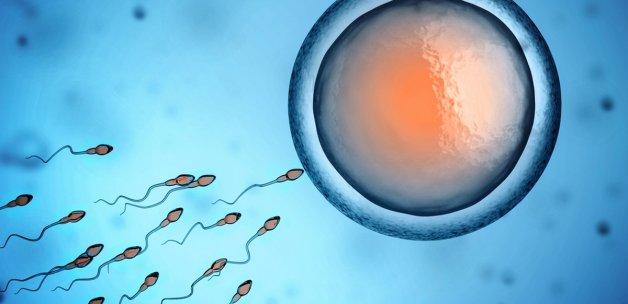 Spermin Bilinmeyen Faydaları!