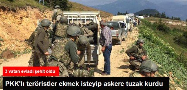 Teröristler Ordu'da Köylüden Ekmek İsteyerek Jandarmayı Pusuya Düşürdü