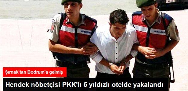 5 Yıldızlı Otelin Bulaşıkçısı, Terör Örgütü PKK Üyesi Çıktı