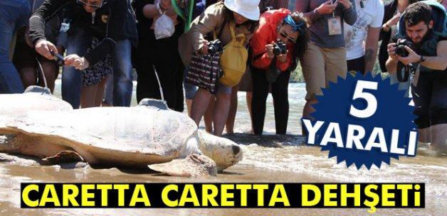 Caretta caretta dehşeti