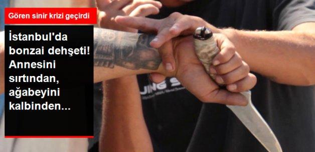 İstanbul'da Bonzai Kullanan Genç, Annesi ve Ağabeyini Vahşice Öldürdü
