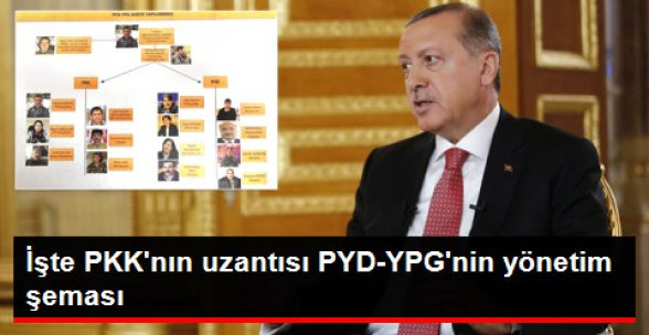 İşte Terör Örgütü PYD- YPG'nin Yönetim Şeması