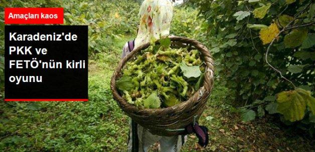 Karadeniz'de Kirli Oyun! Bahçeleri Ateşe Verip 'Kürtler Yaktı' Diyecekler