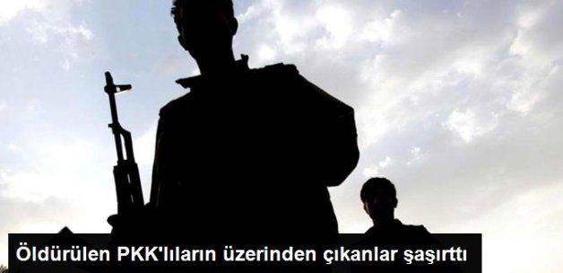 Muş'ta Öldürülen PKK'lıların Üzerinden Resmi Kurumlara Ait Mühürler Çıktı