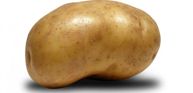 Patates yemek zararlı mı? İşte bilimsel araştırma sonuçları