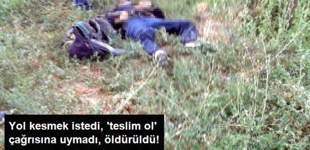 Yol Kesmek İsteyen PKK'lı, Öldürüldü