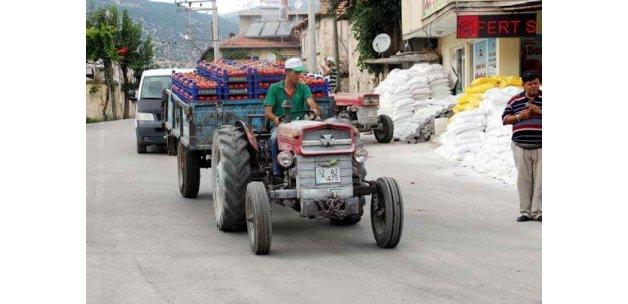 30 milyon TL'lik domates ihraç ediyorlar!