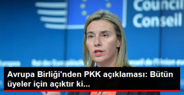 AB Yüksek Temsilcisi: AB ve Bütün Üyeleri İçin PKK, Terör Örgütüdür