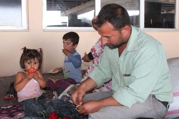 Bir milyon Suriyeliye her ay 100'er lira destek verilecek