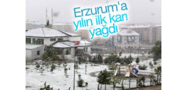 Erzurum'a yılın ilk karı yağdı