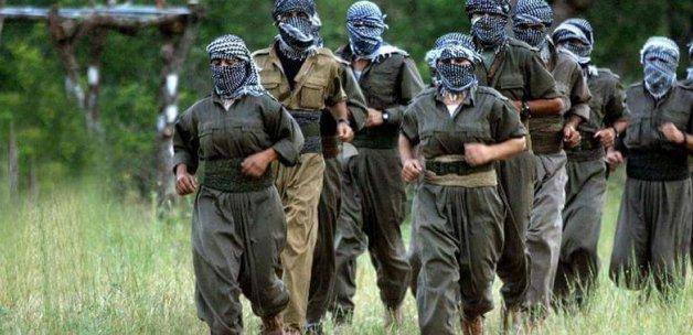 Hakkari'de sızmaya çalışan PKK'lıları jetler vurdu.