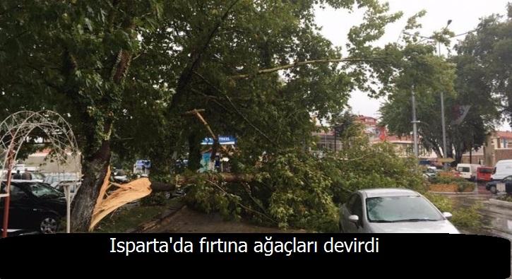 Isparta'da fırtına ağaçları devirdi