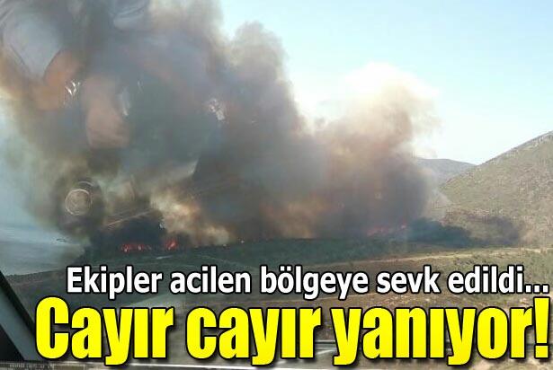Karaburun'da piknikçi ateşi ormanı yaktı