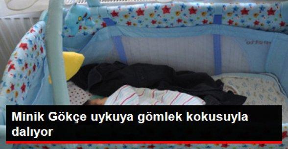 Minik Gökçe Şehit Babasının Kokusuyla Uyuyor