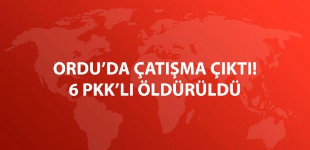 Ordu'da Çatışma 6 PKK'lı Öldürüldü