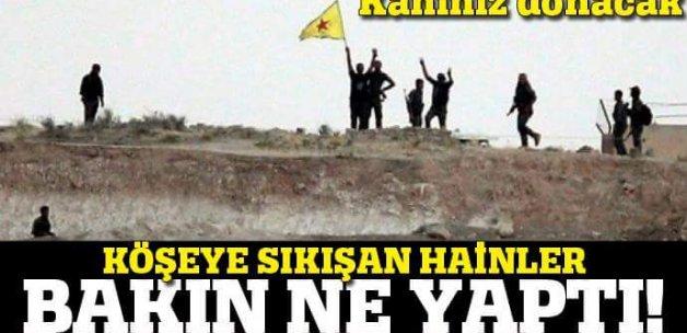 PKK köşeye sıkışınca bakın ne yaptı!