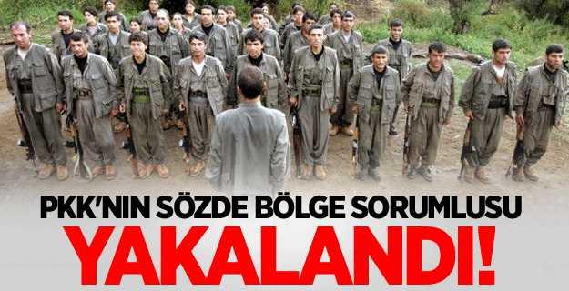 PKK'nın sözde bölge sorumlusu yakalandı!