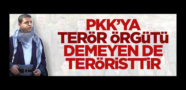 PKK'ya terör örgütü demeyen de teröristtir