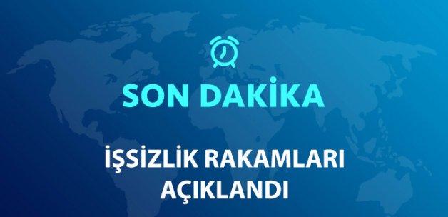 Türkiye'de İşsizlik Oranı, Geçen Yıla Göre Arttı