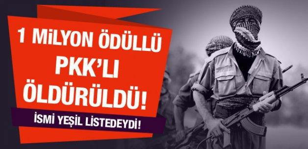 1 milyon TL ödül konulan PKK'lı öldürüldü