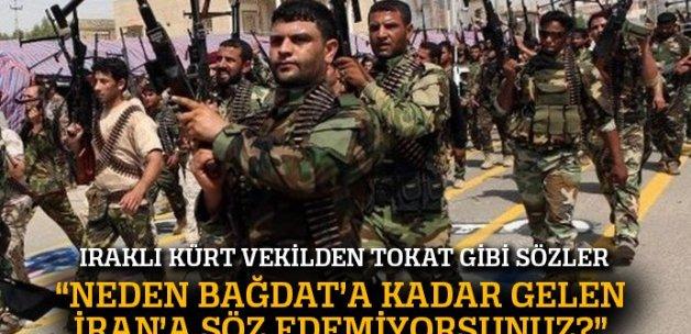 Iraklı Kürt vekilden Türkiye karşıtı çıkışlara sert yanıt