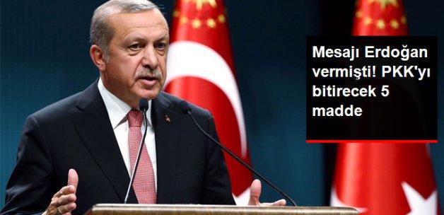 Mesajı Erdoğan Vermişti! PKK'yı Bitirecek 5 Madde