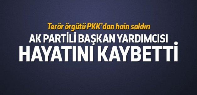 PKK'dan AK Partili Başkan Yardımcısına hain saldırı