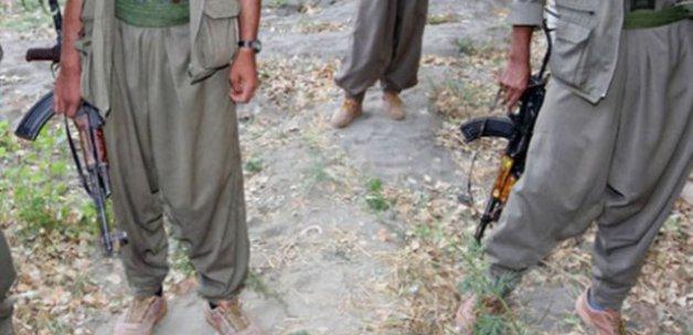 Şırnak'ta 11 terörist öldürüldü