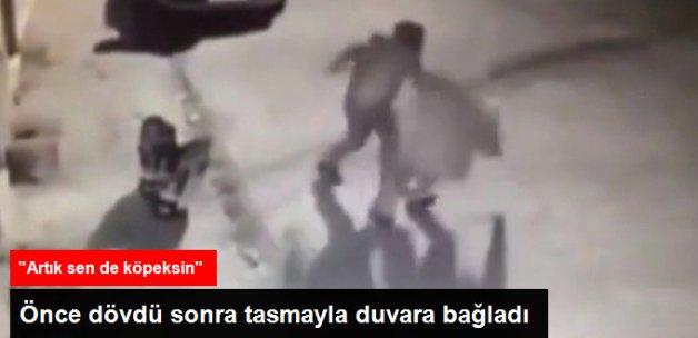 Sopayla Köpeklere Saldırdı, Dayak Yedi, Tasmayla Duvara Bağlandı
